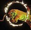 Цирки в Шлиссельбурге